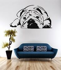 Bulldog Animale Cane Wall Art Sticker Preventivo Decalcomania Vinile Trasferimento