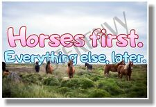 Horses First Everything Else, Later (pink and blue) - NEW animal POSTER