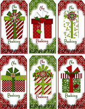 12 CHRISTMAS PACKAGE PRESENT HANG / GIFT TAGS FOR SCRAPBOOK PAGES (43)