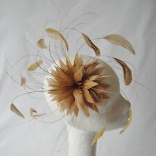 Gold Feather Fascinator for Races , Weddings , And Proms