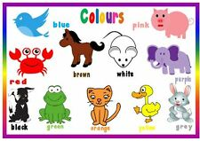 COLOURS & ANIMALS - A4 LAMINATED POSTER- FIRST LEARNING- TODDLER EYFS