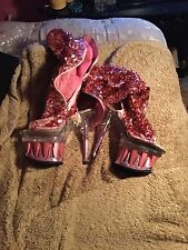 Very Well Worn Woman's Shoes