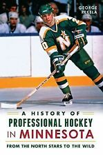 A History of Professional Hockey in Minnesota : From the North Stars to the...