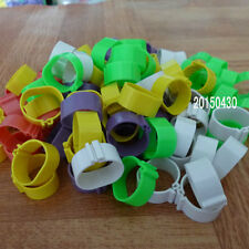20mm Chicken Leg Bands Chicken Poultry Rings 5 Colors ( 100 pcs)