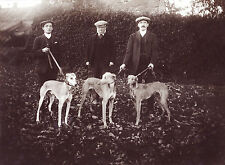 GREYHOUND THREE MEN AND DOGS VINTAGE STYLE DOG GREETINGS NOTE CARD