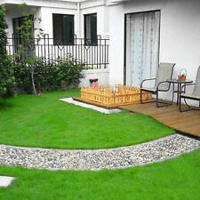 1000Pcs Lawn Green Grass Seeds Festuca Arundinacea Lawn Field Golf Courses Seeds