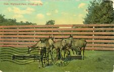 Pittsburgh, PA  The Deer in Highland Park 1909