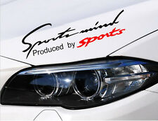 "14"" X 4.5"" Sports Mind Black Car Headlight Taillight Eyebrow Decal Sticker Vinyl"