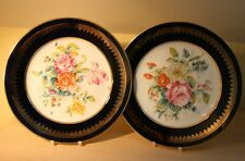 Exquisite Pair of Hand Painted French Display Plates - Porcelaines de Couleuvre