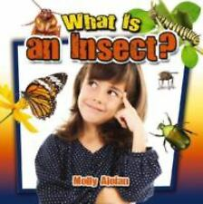 What Is an Insect? (Insects Close-Up)