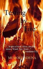 Testing by Fire : ... works of Gold, Silver, Precious Stones, Wood, Hay,...