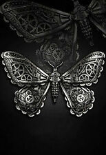 Restyle Haarspange Motte Gothic Hairclip Schmetterling Moth Silver Steampunk WGT