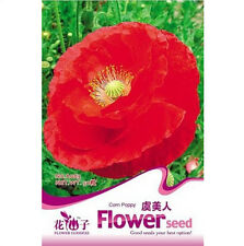 FD1394 Poppy Seed Papaver Rhoeas Flowers Seed ~1 Pack 100 Seeds~