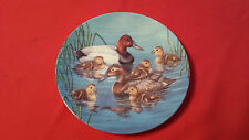 Natures Nursery Piggyback Ride Canvass Back Duck Bird Plate