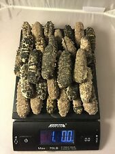 Natural sun dried sea cucumber  Isostichopus Badionotus (1 Pound)-small Size