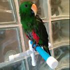 Birds Pet Suction Cup Toys Paw Grinding Stand  Bath Shower Perches Parrot Budgie