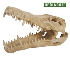 HERITAGE WP024M AQUARIUM FISH TANK LARGE CROC CROCODILE SKULL ORNAMENT 25CM