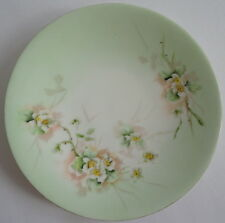 J. P. Pouyat Limoges Handpainted Pastel Green Plate w/ White Flowers Peach Backg
