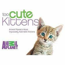 Too Cute Kittens : Animal Planet's Most Impossibly Adorable Kittens -  NEW!