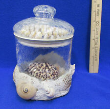 Sea Shell Crackled Glass Jar Canister & Loose Sea Shells