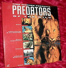 LD Laserdisc PREDATORS OF THE WILD  Bx Set Bats/Crocks/Snakes/African/Wolf +more