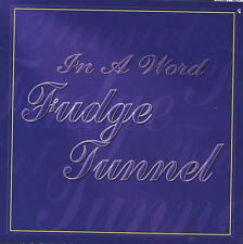 Fudge Tunnel - In A Word Cassette Tape - Sealed - NEW COPY