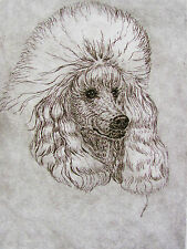 GEOFFREY LASKO - TOY POODLE DOG -  LISTED ARTIST ETCHING - S&N - FREE SHIP
