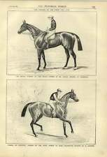 1879 Horseracing Winners Of The Derby And Oaks Wheel Of Fortune Sir Bevys