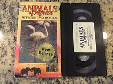 ANIMALS OF AFRICA VOL 9 BETWEEN TWO WORLDS RARE CELEBRITY VIDEO VHS DOCUMENTARY!