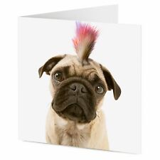 Punk pug dog with mohican haircut funny cute Birthday General card