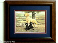 GOLDEN LAB DOG PICTURE BLACK LAB PUPPIES  LABRADOR RETRIEVER MATTED FRAMED 8X10
