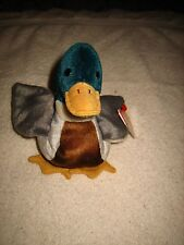 TY BEANIE BABY DUCK~JAKE~TUSH TAG STAMPED #484~GREAT 4 YOUR COLLECTION~NWT~L@@K~