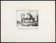 Antique Print-BULL-OX-FROG-FABLE-GRENOUILLE-BOEUF-LA FONTAINE-1800