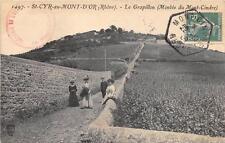 CPA 69 SAINT CYR AU MONT D'OR LE GRAPILLON