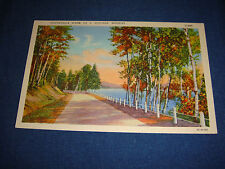Vintage 1940s Linen PC Picturesque Scene on a Montana Highway