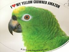 Yellow Crown Amazon Parrot Exotic Bird Vinyl Decal Bumper Sticker
