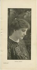 1904 Maxine Elliott 6x12 Vintage Printed Photo of Actress