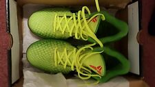 Nike Zoom Kobe VI 6 GRINCH LIME GREEN Size 10! 429659 701 USED! GREAT COND!