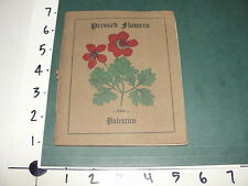Pressed Flowers from Palestine / S.P. Forest - Holy Herbarium 1902 - Rare & Neat