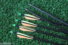 6Pcs 31'' Screw on/off Tip Fiberglass Arrows For Compound Bow Shooting Practice