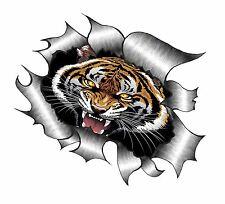 Ripped Torn Metal Look Design & Roaring Bengal Tiger Design vinyl car sticker