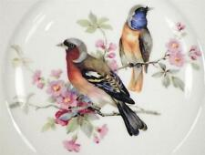 2 Birds Decorative Plate Kuba Porzellan Bavaria Germany TYPE OF BIRD HELP