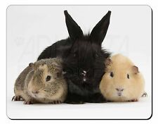 Rabbit and Guinea Pigs Print Computer Mouse Mat Christmas Gift Idea, AR-9M