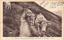 SCENES ET TYPES DES PYRENEES 41 LL pâturage en montagne vaches timbrée 1937