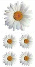 Paper House Productions Photo Real Stickers OX EYE DAISY Flowers Daisies