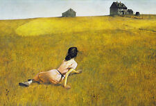 Christina's World Andrew Wyeth Barn Country Realism Landscape Print Poster 36x27