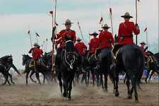 741069 Royal Canadian Mounted Police Musical Ride Ottawa Canada A4 Photo Print