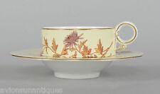 Antique 1889 Royal Worcester Trembleuse Cup & Saucer Floral Decoration