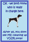 English Pointer - New - Dog fridge magnets New Gift - Free UK p/p