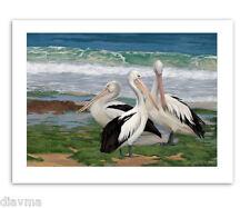 © ART -  Illustration Pelican Water Bird Wildlife Original Artist print by Di